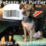 Febreze Air Purifier Helps #KeepItFresh with Kitchen Trash and Beagle Stank