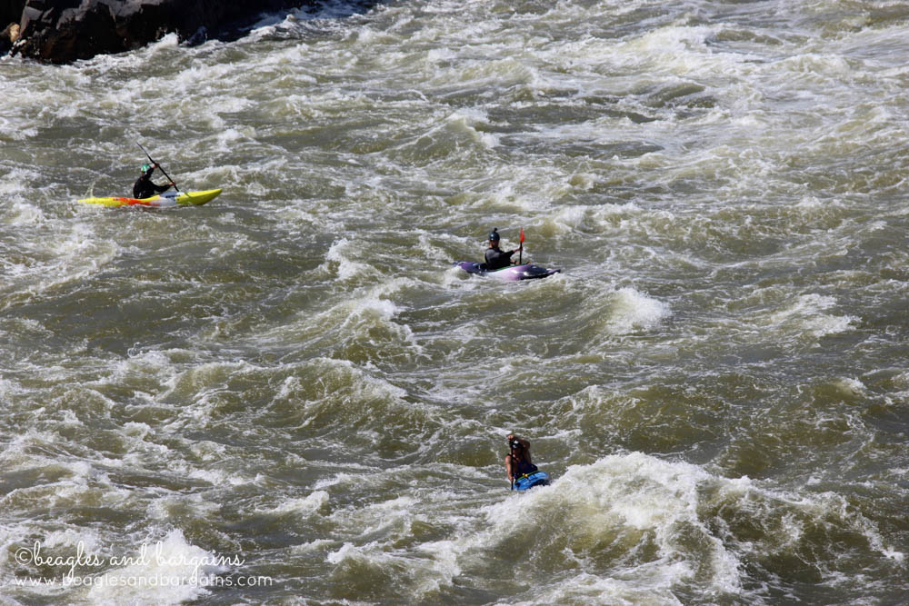 Kayakers going down Great Falls - Very dangerous!
