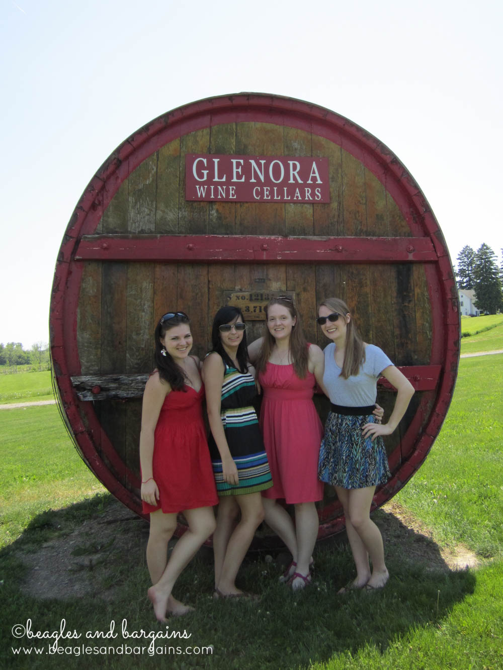 8 Photos of Happiness - Friends (and Wine and College)