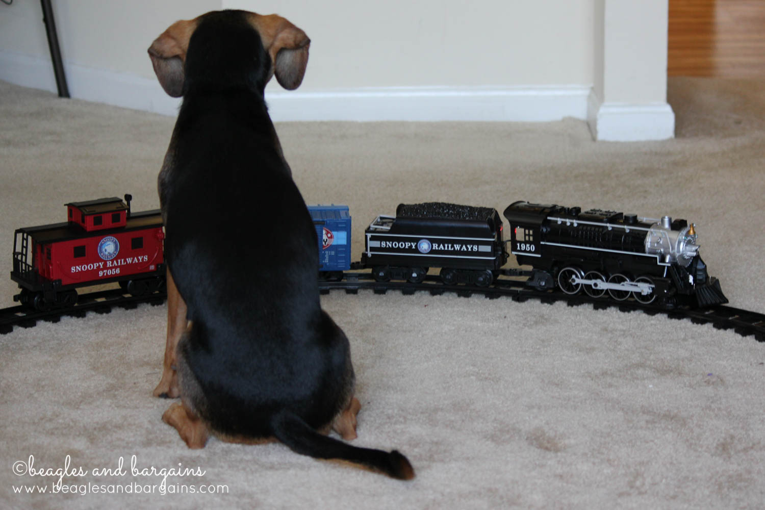 Luna observes the Snoopy Railroad Train from Lionel