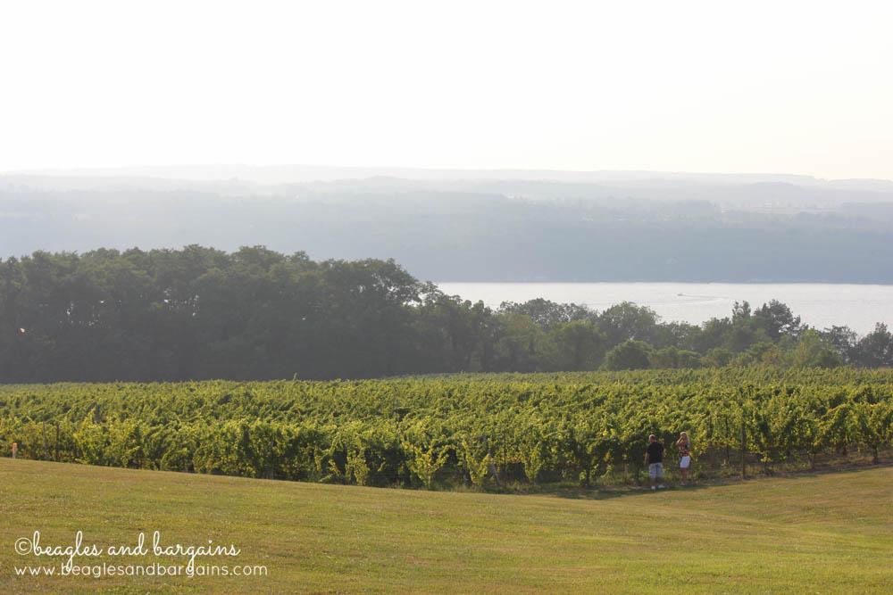 View of Seneca Lake from Standing Stone Vineyards