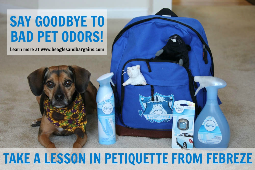 Say goodbye to bad pet odors - Take a lesson in Petiquette from Febreze