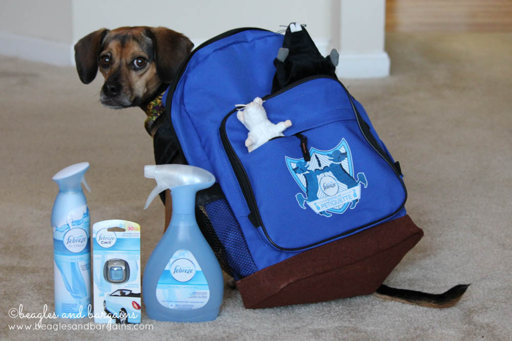 Luna heads off to Febreze School of Petiquette