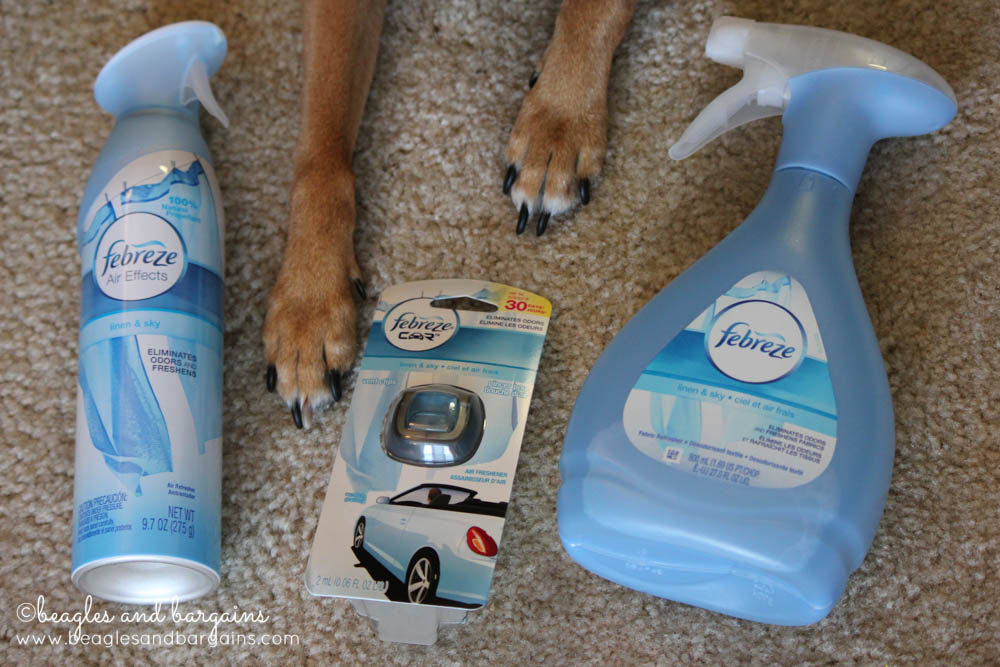 Febreze Fabric Refresher, Car Vent Clip, and Air Effects for pet odors