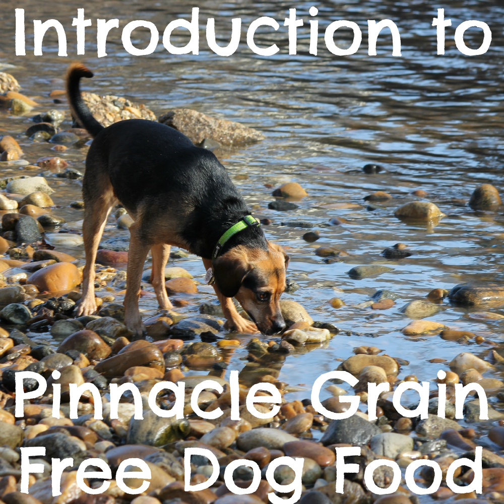 Introduction to Pinnacle Grain Free Dog Food