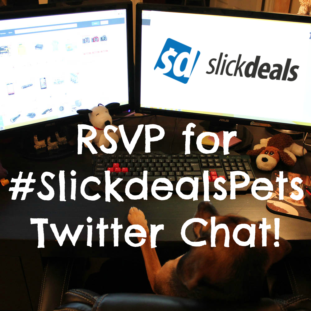 RSVP for #SlickdealsPets Twitter Chat!