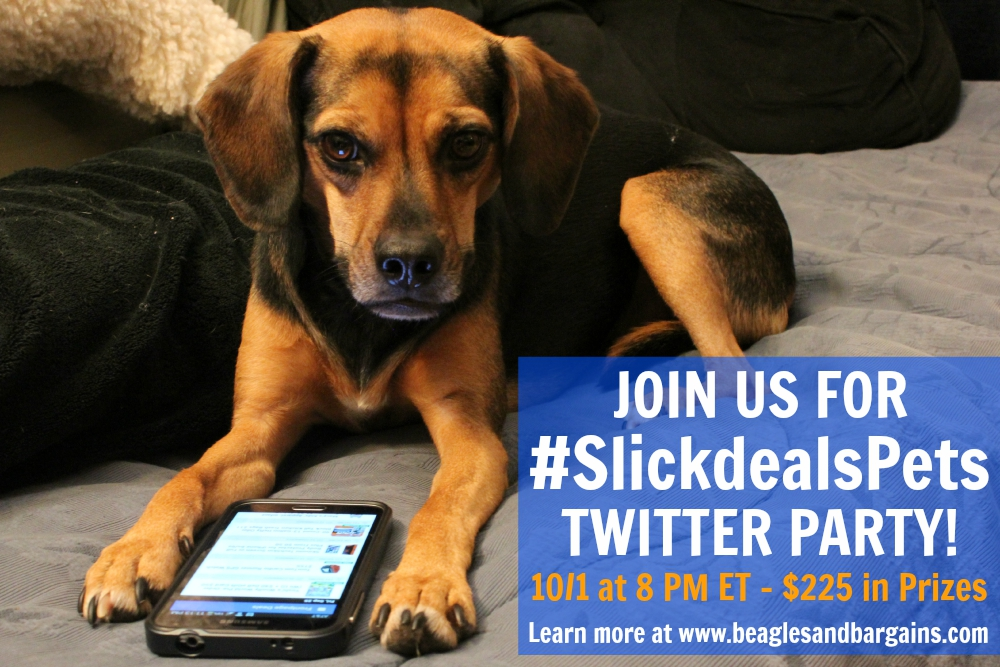 Join us for #SlickdealsPets Twitter Chat on October 1