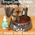 Get More Doggy Kisses With #TropiCleanFresh Breath Drops