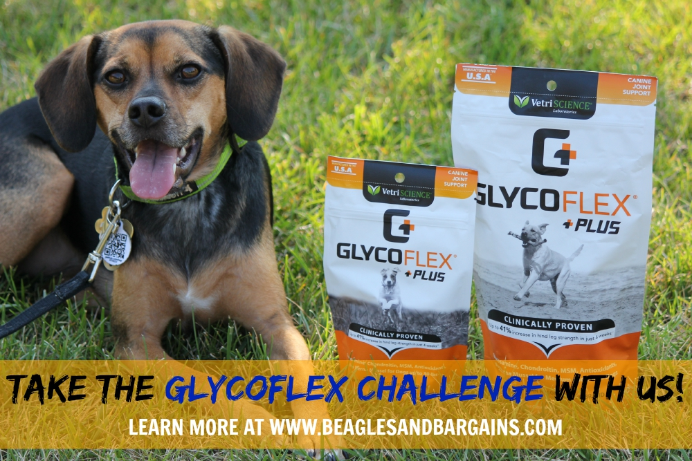 Take the Glyco Flex Challenge with us!