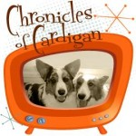 Chronicles of Cardigan Logo