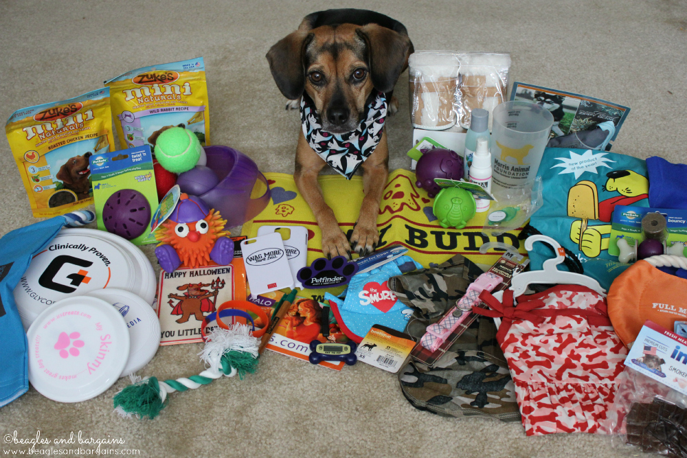Gotcha Day Prizes - Here are some of the possible prizes, but there are even more!