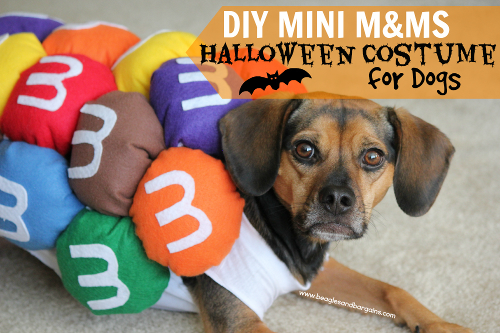 Luna wearing her Mini M&Ms Halloween Costume