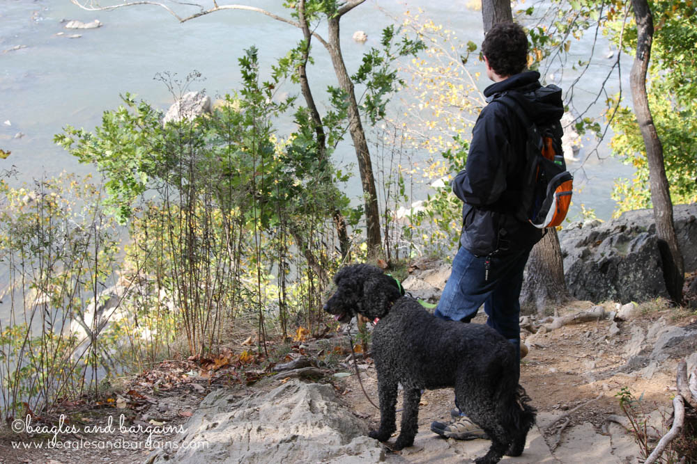 Struan and Cousin Keto look out on the Potomac River