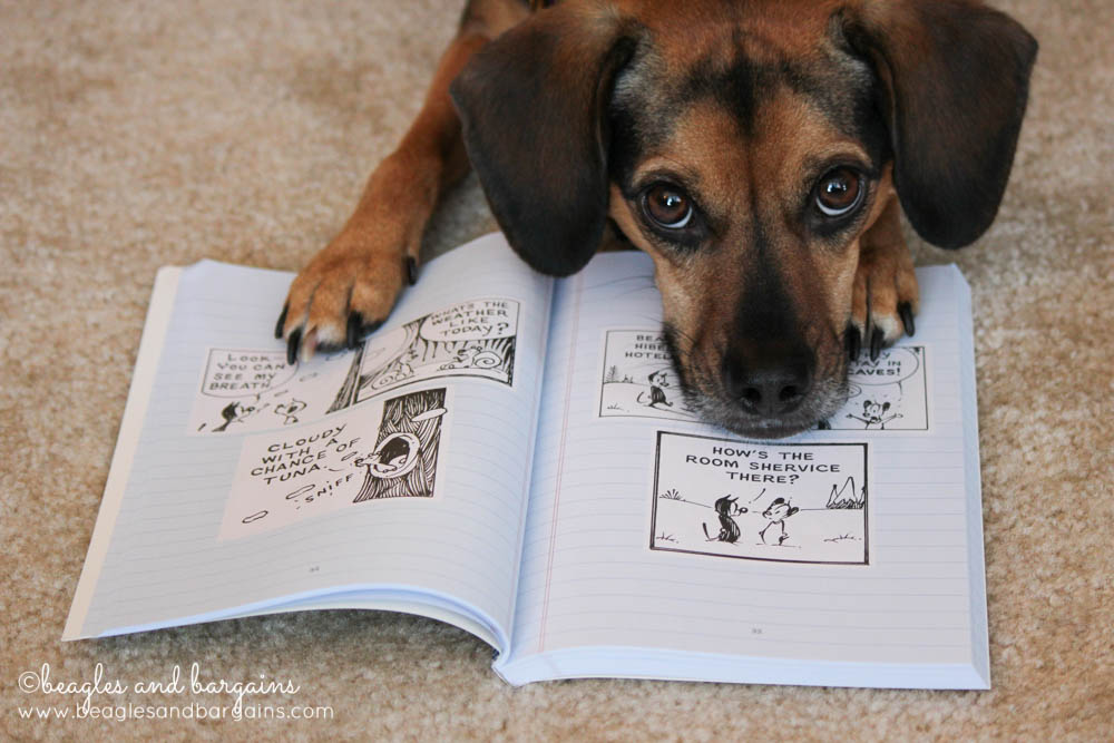 Luna and her favorite comcics from The Mutts Winter Diaries