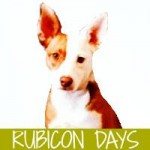 Rubicon Days Logo