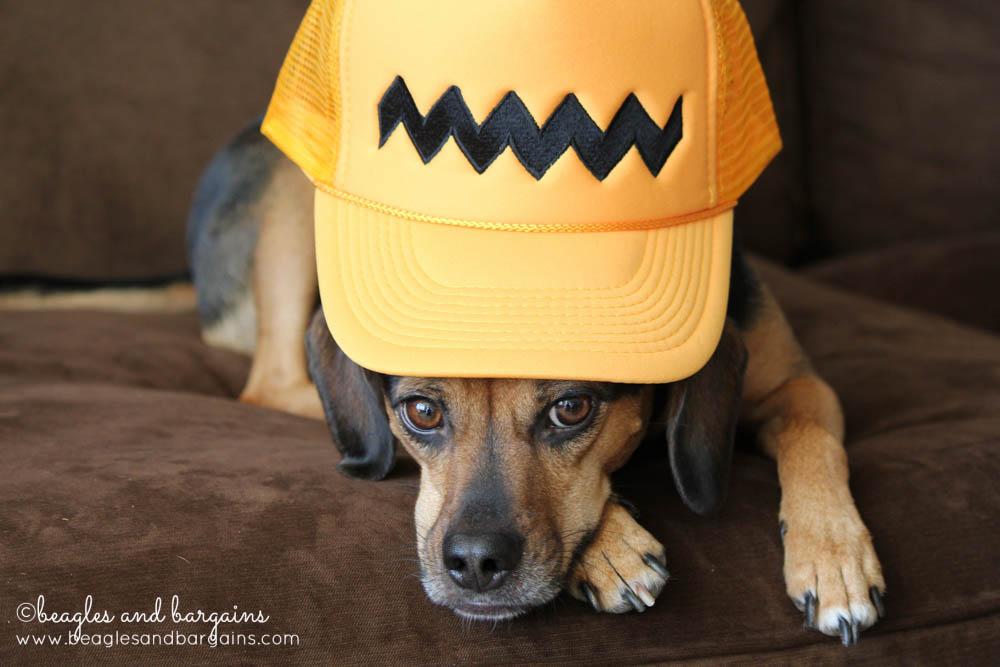 Luna tries on our Charlie Brown Peanuts Trucker Hat.