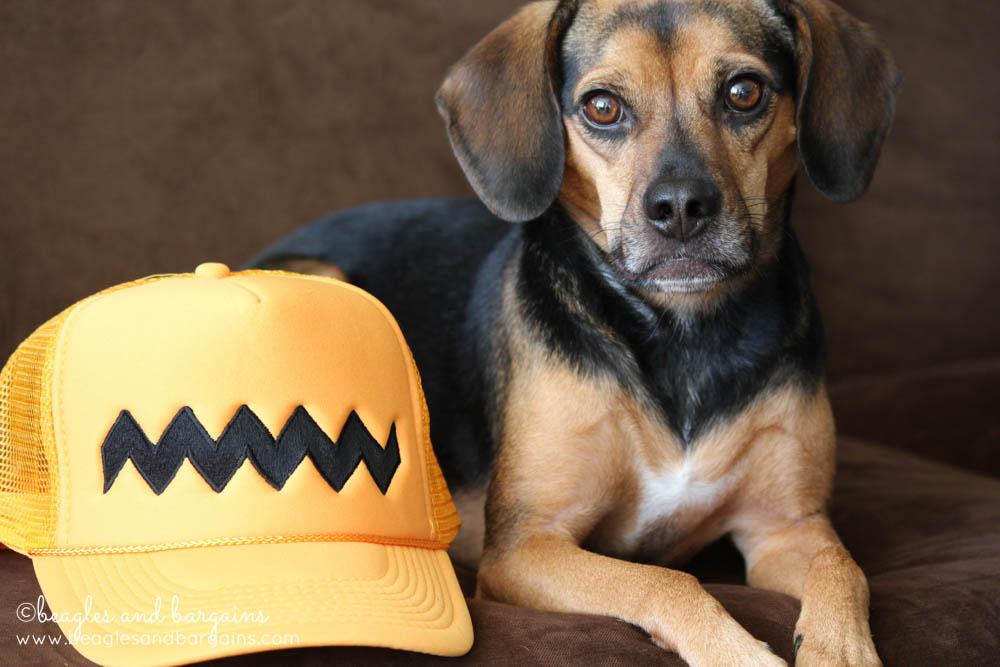 Luna with her Peanuts Trucker Hat.