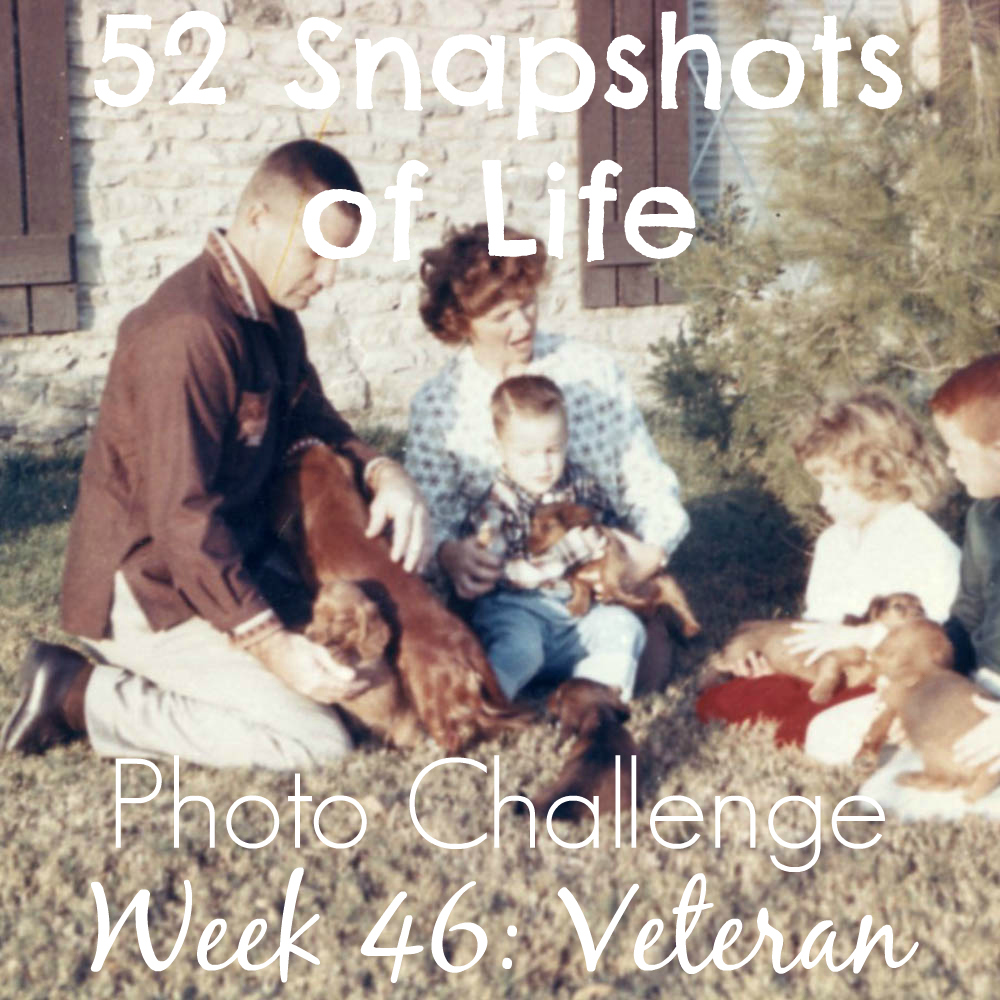 52 Snapshots of Life - Week 46 - Veteran - A Dog Loving Veteran