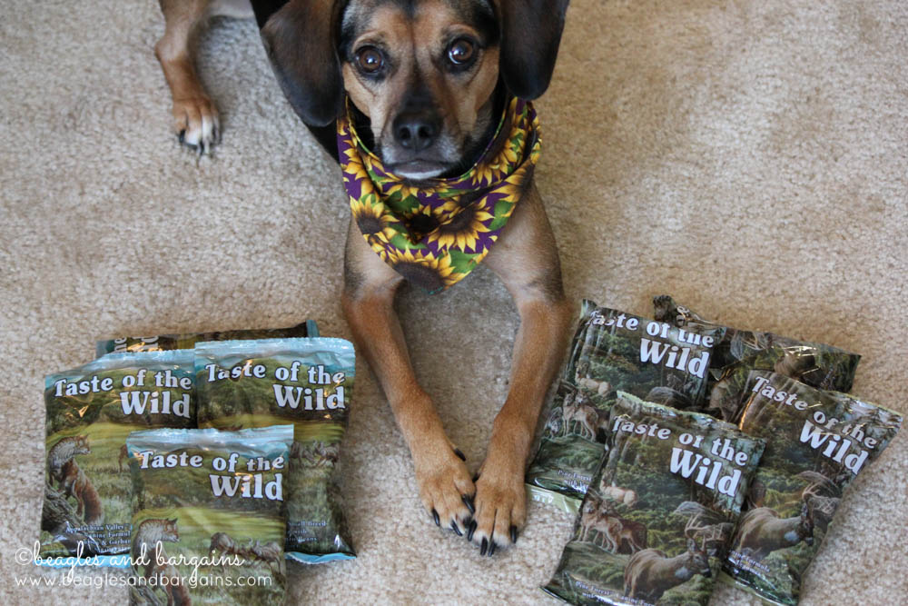Luna with new formulas from Taste of the Wild