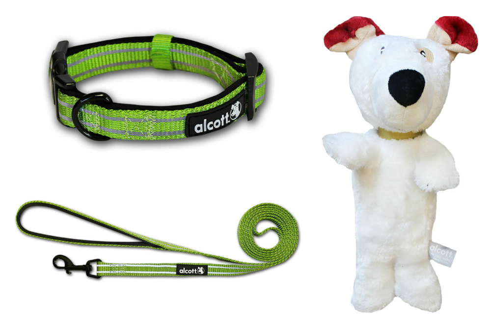 Alcott Adventure Collar & Leash Set and Alcott Plush Toy