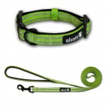 Alcott Explorer Adventure Collar & Leash - Beagles & Bargains Holiday Guide 2015