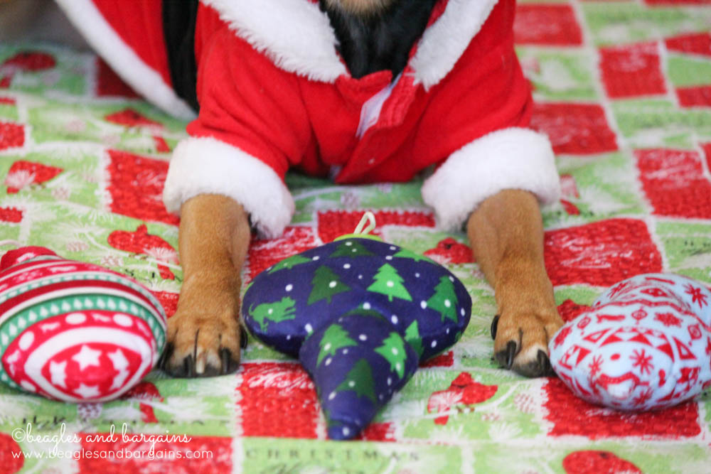 Festive dog toys from Pets Lifestyle and You (P.L.A.Y.)