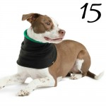 Beagles & Bargains Stocking Stuffer Giveaways 2015 - Day 15 - Gold Paw Series Snood