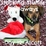 Stocking Stuffer Giveaway Day 12: Alcott Adventure Collar & Leash Set