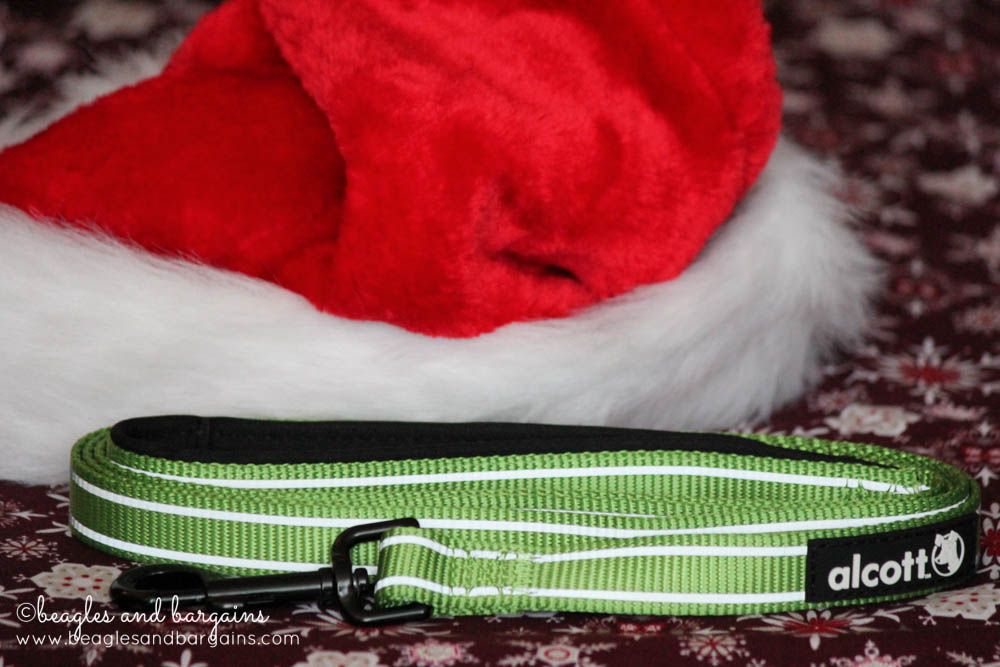 Beautiful bright green Alcott Adventure Leash