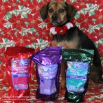 Brothers Complete Brothers Biscuits - Beagles & Bargains Holiday Guide 2015