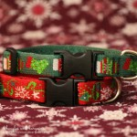 Lupine Holiday Collar & Leash Set - Beagles & Bargains Holiday Guide 2015