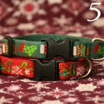 Beagles & Bargains Stocking Stuffer Giveaways 2015 - Day 5 - Lupine Collar & Leash Set