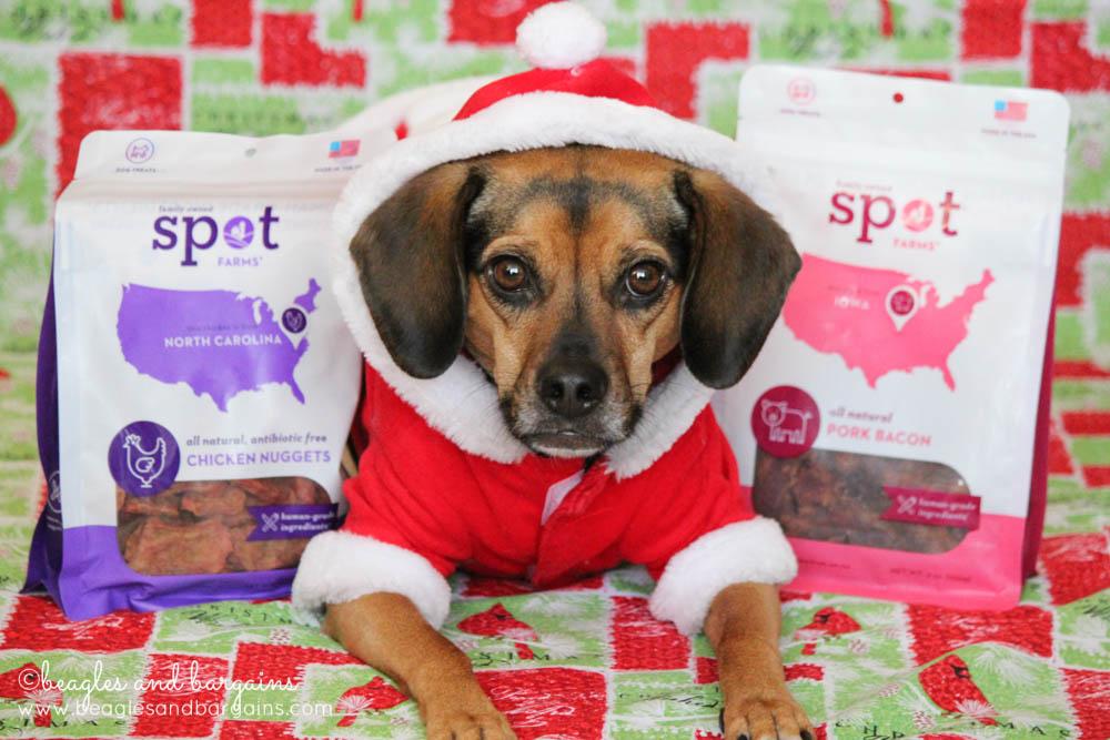 Luna loves Spot Farms dog treats made of chicken!