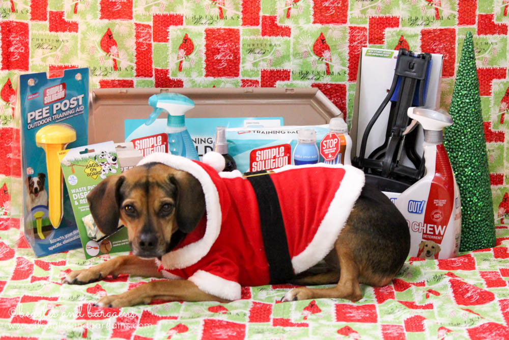 Santa Paws delivers a New Puppy Bundle from Simple Solution