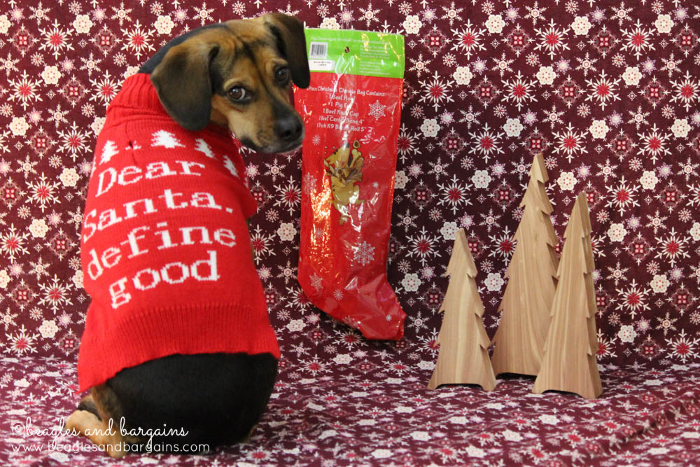 Luna with her Stocking full of Jones Natural Chews
