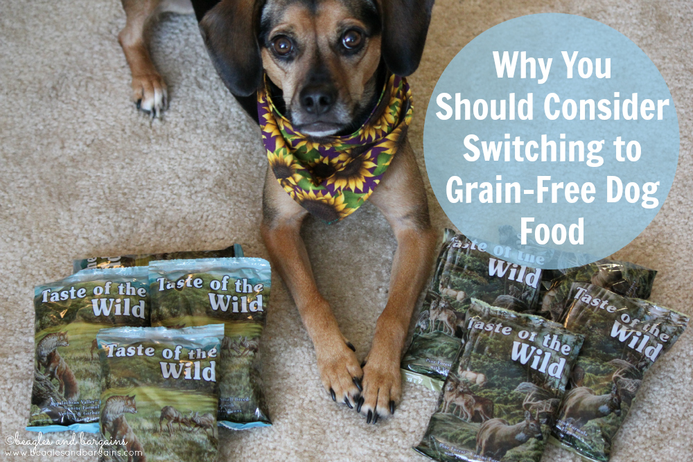 Why You Should Consider Switching to Grain-Free Dog Food