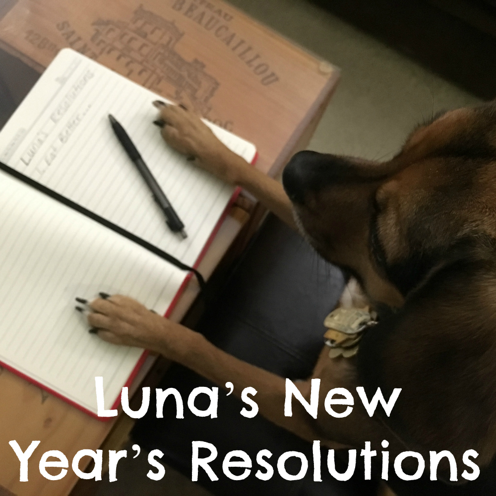 Luna's New Year's Resolutions 2016