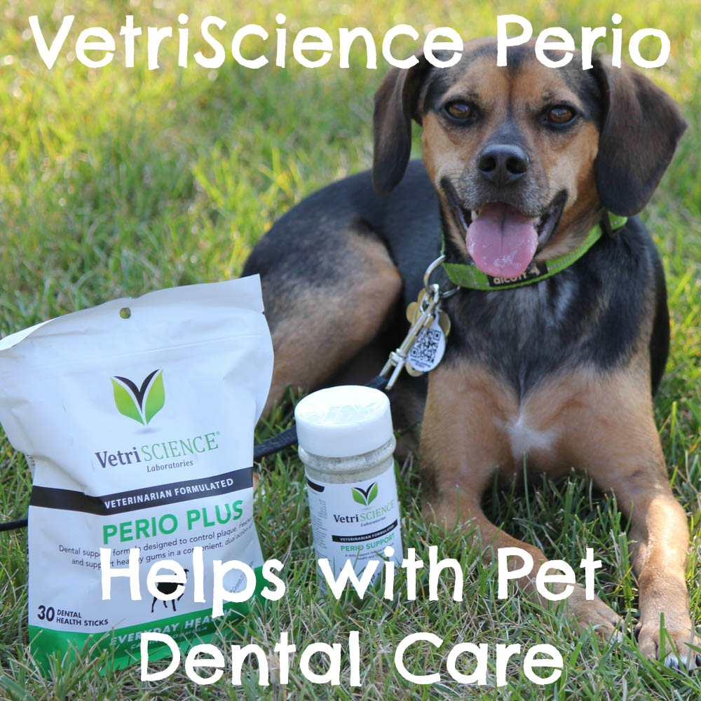 VetriScience Perio Helps with Pet Dental Care