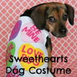 DIY Valentine Sweethearts Costume for Dogs