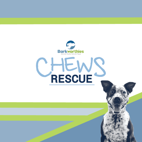 Barkworthies Chews Rescue