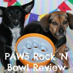 We're Ready to Party with the New PAW5 Rock 'N Bowl