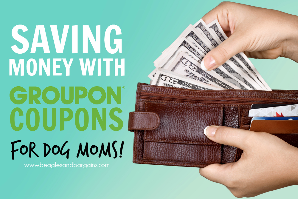 Saving Money with Groupon Coupons for Dog Moms!