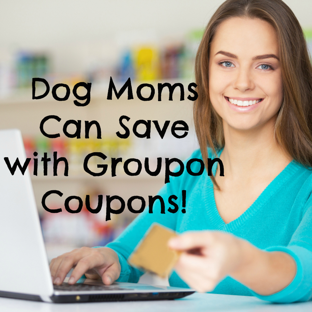 Dog Moms Can Save with Groupon Coupons Too!