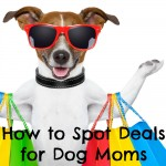 Clearance Racks and Holiday Sales  – How to Spot Deals for Dog Moms