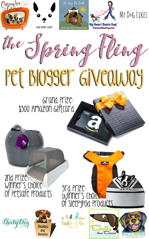 Spring Fling Pet Blogger Giveaway