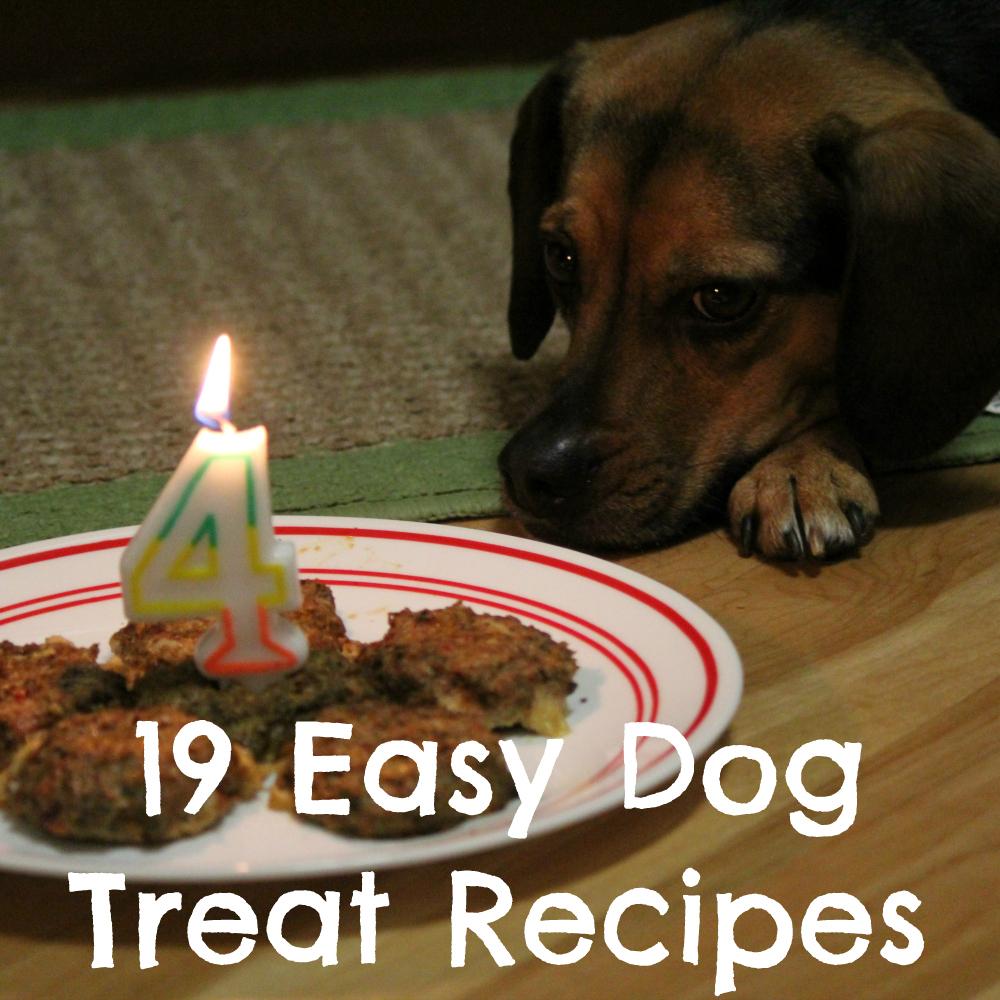 19 Easy Dog Treat Recipes