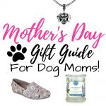 12 Perfect Mother's Day Gifts for Dog Moms
