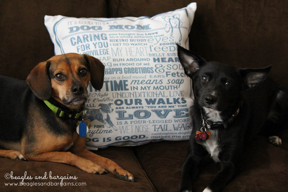 Dog Mom Pillow from Dog Is Good - Home Decor