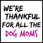 We're Thankful for All the Dog Moms