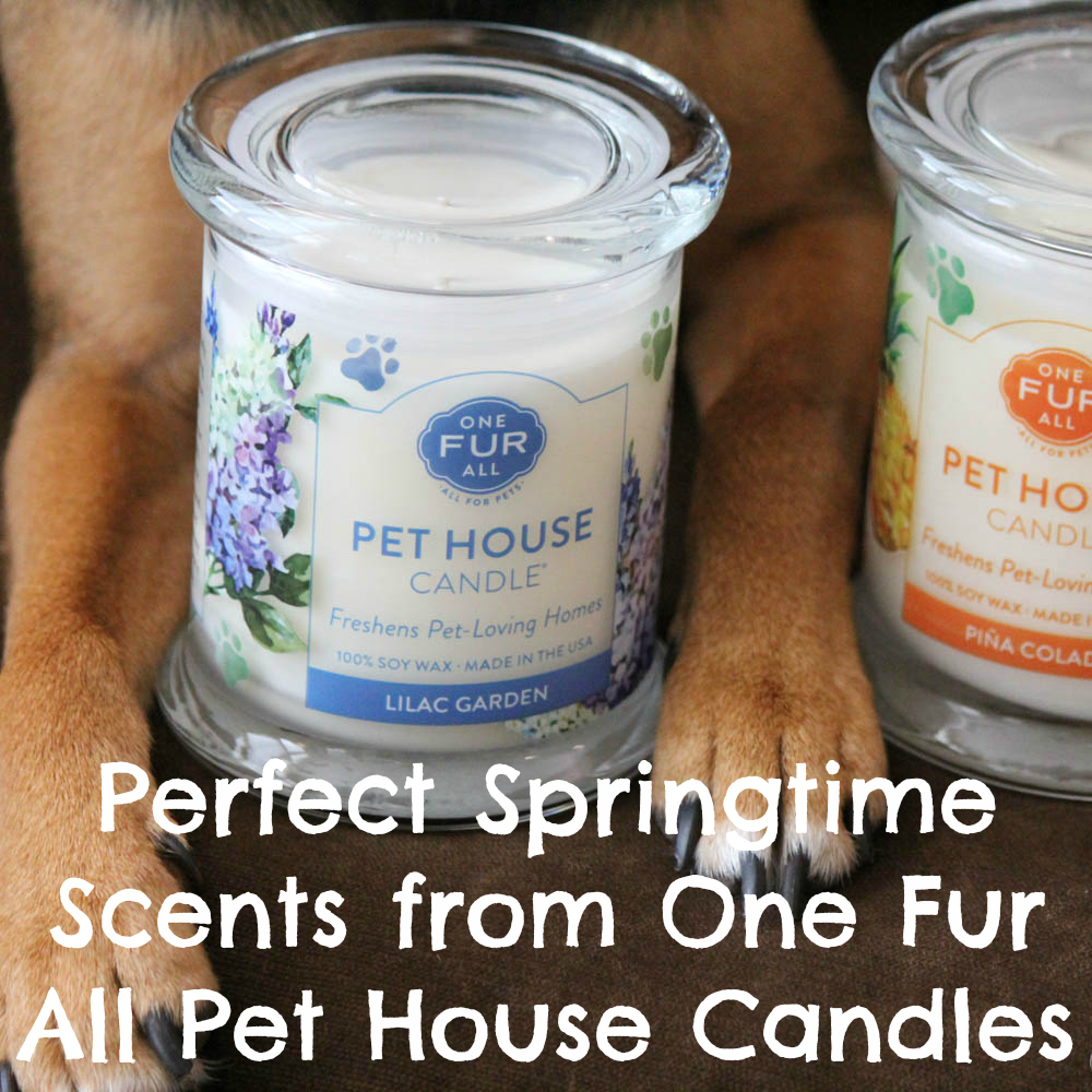Perfect Springtime Scents from One Fur All Pet House Candles!